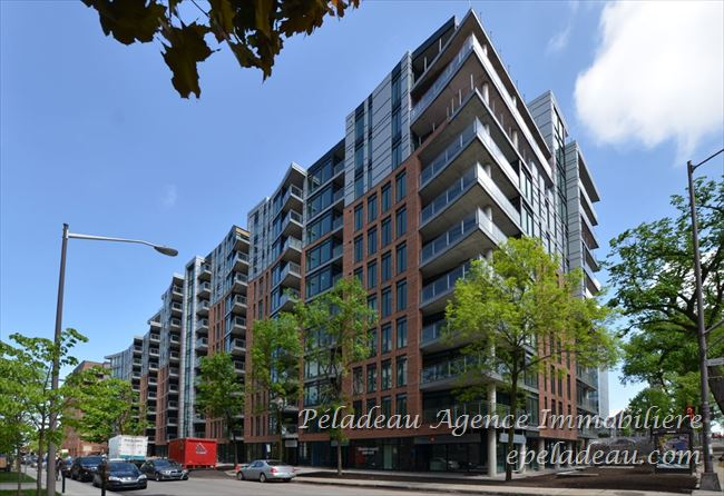 1175 Av. Turnbull #118